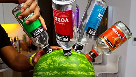 Party Vodka Watermelon | DIY Joy Projects and Crafts Ideas