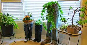 DIY Blue Jean Planters