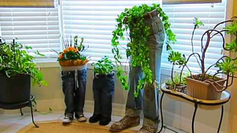 DIY Blue Jean Planters | DIY Joy Projects and Crafts Ideas