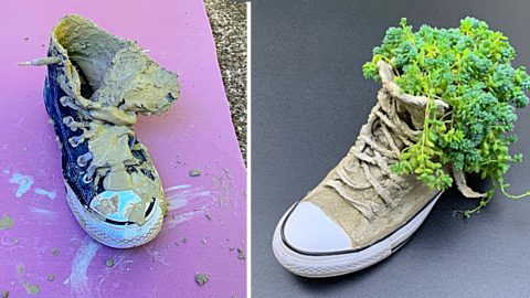 DIY Cement Shoe Planter | DIY Joy Projects and Crafts Ideas