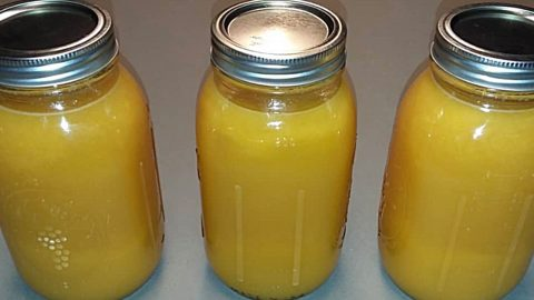 Orange Dreamsicle Moonshine Recipe | DIY Joy Projects and Crafts Ideas