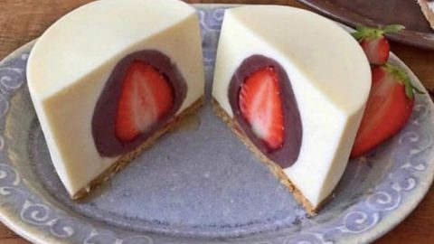 Chocolate Covered Strawberry Cheesecake Recipe | DIY Joy Projects and Crafts Ideas