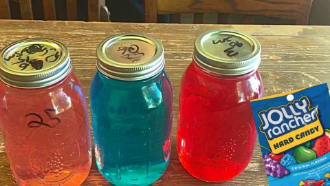 Jolly Rancher Moonshine Recipe | DIY Joy Projects and Crafts Ideas