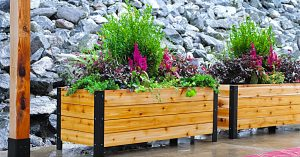DIY Modern Raised Planter Box