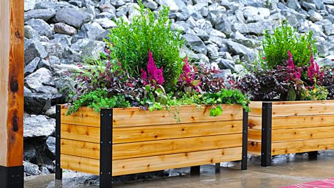 DIY Modern Raised Planter Box | DIY Joy Projects and Crafts Ideas