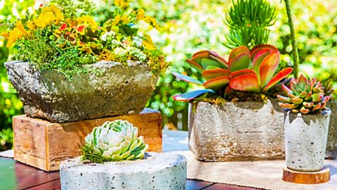 DIY Hypertufa Planters | DIY Joy Projects and Crafts Ideas