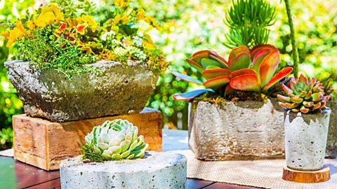DIY Hypertufa Planters | DIY Joy Projects and Crafts Ideas