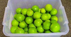 How To Keep Limes Fresh Longer