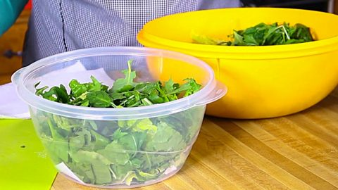 How To Keep Salad Fresh For Days   DIY Joy Projects and Crafts Ideas