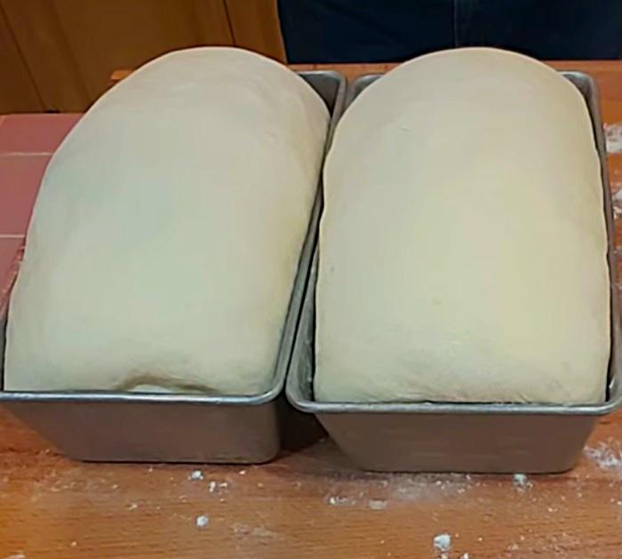 Homemade yeast sandwich bread recipe