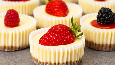 Mini Cheesecake Recipe | DIY Joy Projects and Crafts Ideas