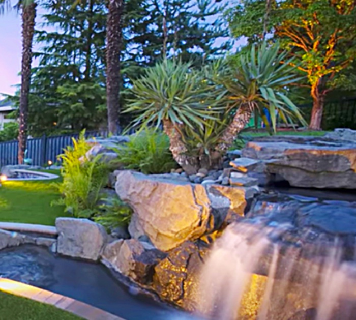 Make a privacy landscape with plants and a water feature