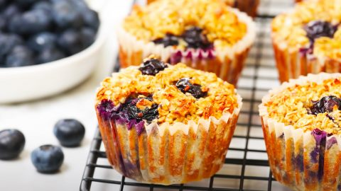 Blueberry Oatmeal Muffin Recipe | DIY Joy Projects and Crafts Ideas