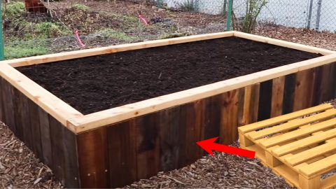 How To Build A Raised Bed Using Pallets | DIY Joy Projects and Crafts Ideas