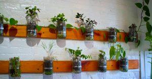 How To Build A Mason Jar Garden