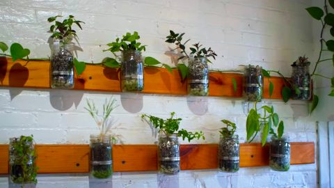 How To Build A Mason Jar Garden | DIY Joy Projects and Crafts Ideas