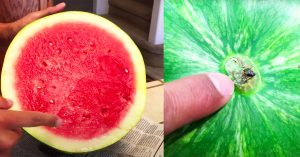 How To Pick A Sweet Watermelon