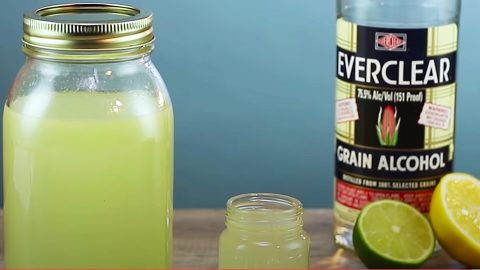 How To Make Margarita Moonshine | DIY Joy Projects and Crafts Ideas
