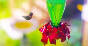 How To Make A Hummingbird Feeder From A Glass Bottle