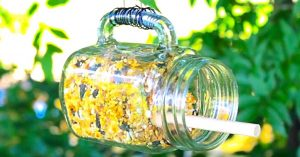 How To Make A Mason Jar Bird Feeder