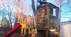 How To Make A Tree Fort For $100