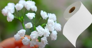 How To Make Baby's Breath Flowers From Toilet Tissue