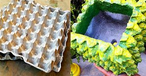 How To Make DIY Cement Planters