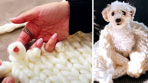 How To Finger-Knit A Chunky Baby Blanket | DIY Joy Projects and Crafts Ideas