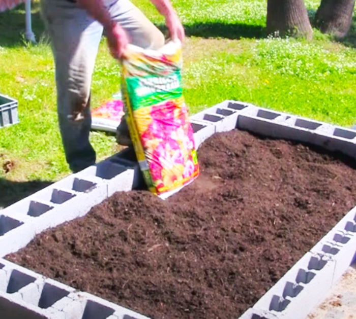 Fill A Cinder Block Raised bed With Top Soil