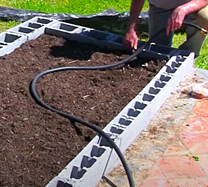 Use A Soaker Hose As An Irrigation System In A Cinder Block Raised Garden Bed