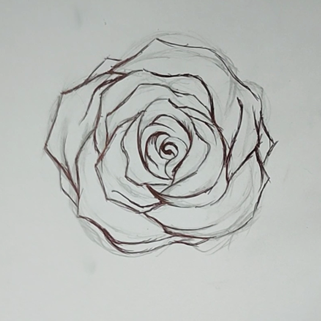 How to Draw A Rose With Pencil, Pen and Ink - Easy Flowers to Draw - Cool Things to Draw When Bored - Pretty Crafts and art Ideas for Teens