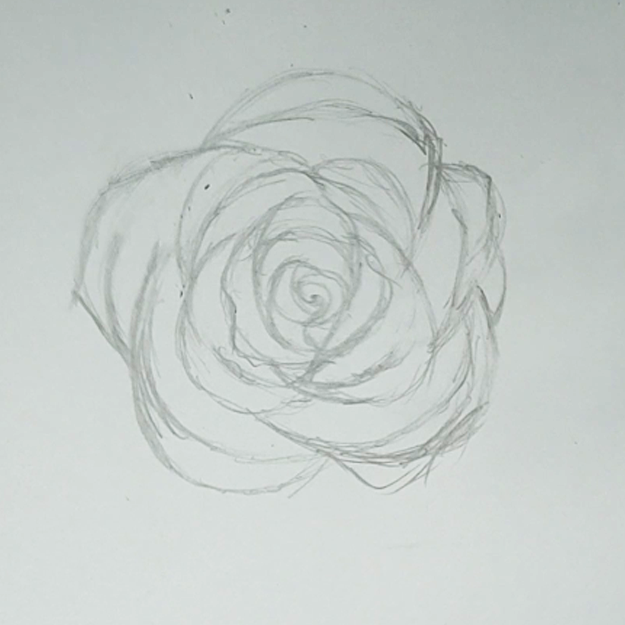 Step by Step Drawing Tutorials - Easy Drawing Ideas for Flowers - How to Draw Roses - Cool Things to Draw When Bored