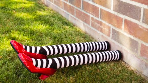DIY Wizard Of Oz Wicked West Halloween Decor | DIY Joy Projects and Crafts Ideas