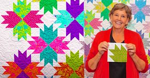 Make A Bear Paw Point Quilt With Jenny Doan