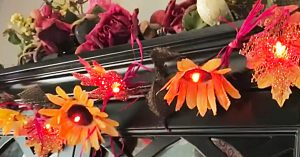 Dollar Tree DIY Autumn Flower Lights