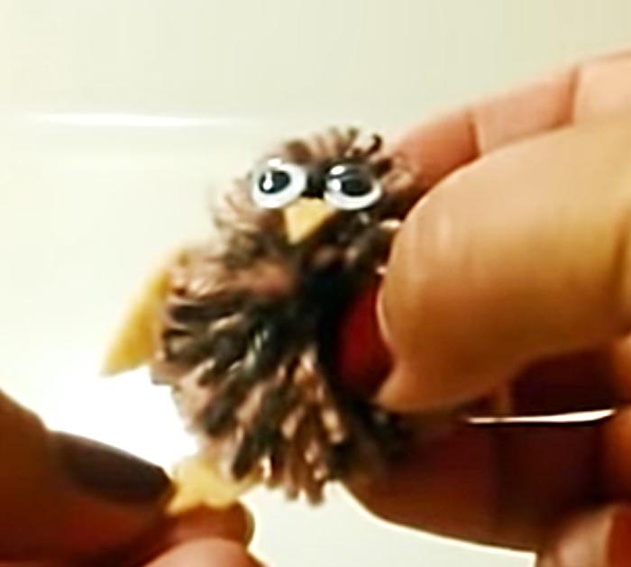 Yarn Animal Ideas - DIY Owl - Yarn Crafts