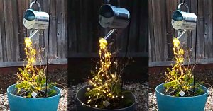 How To Make Watering Can LED Cascading Lights