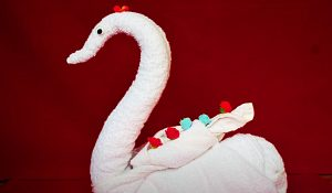 How To Make A Towel Into A Swan
