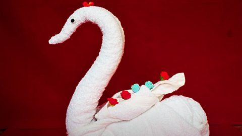 How To Make A Towel Into A Swan | DIY Joy Projects and Crafts Ideas