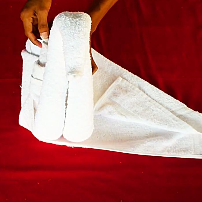 Towel Art Ideas - Easy Animal Gift - DIY Towel Swan
