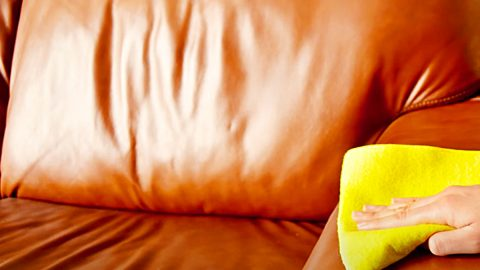 How To Clean A Leather Sofa Without Harsh Chemicals | DIY Joy Projects and Crafts Ideas