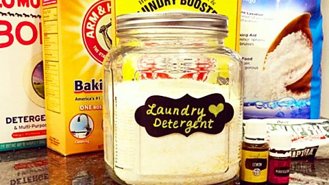 Make A Year's Worth Of Laundry Soap For $30 | DIY Joy Projects and Crafts Ideas