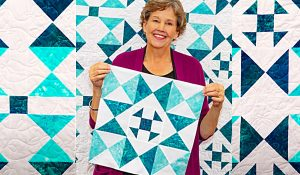 Sunshine Shoofly Quilt With Jenny Doan