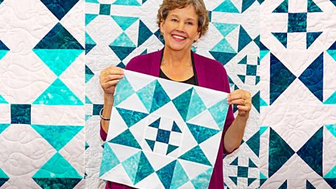 Sunshine Shoofly Quilt With Jenny Doan | DIY Joy Projects and Crafts Ideas
