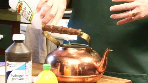 How To Clean Tea Kettles With Natural Ingredients | DIY Joy Projects and Crafts Ideas