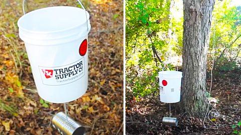 DIY 5-Gallon Bucket Deer Feeder | DIY Joy Projects and Crafts Ideas