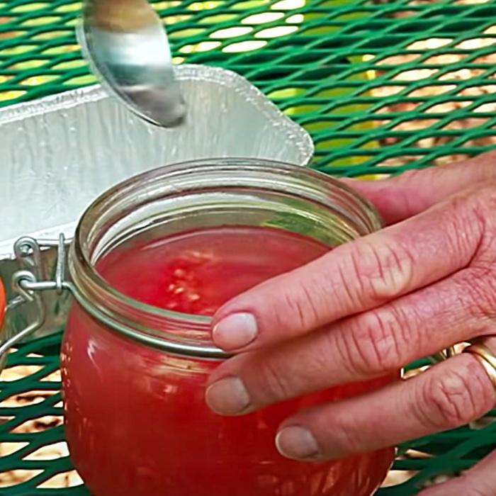 How To Harvest Tomato Seeds - Gardening Ideas - Grow A Food Garden
