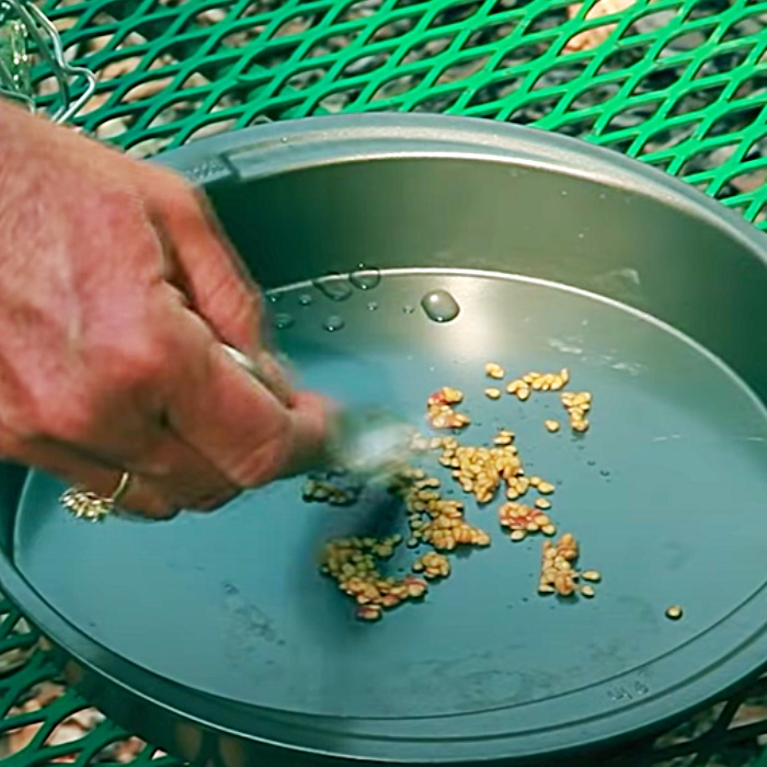 Dry Seeds For A Spring Garden - How To Save Seeds At Home - Easy Food Gardening At Home