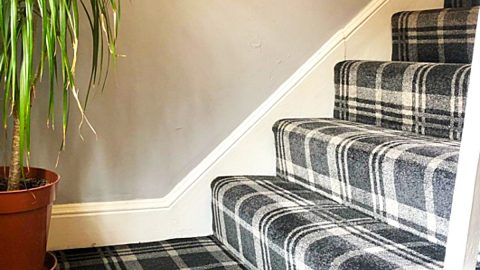 How To Clean Stair Carpet In Under 10 Minutes   DIY Joy Projects and Crafts Ideas