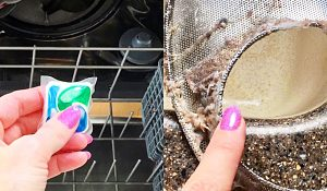 Why Not To Use Dishwasher Pods